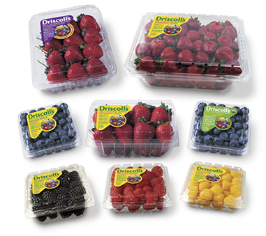berries $.50/1 Driscolls Berries Coupon