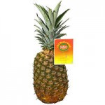 *HOT* $1.25/2 Del Monte Golden Pineapple Coupon