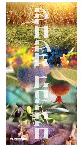 Screen Shot 2013 08 04 at 1.19.31 AM Booth Dwellers | Sukkah Banners 5% Off Discount Code